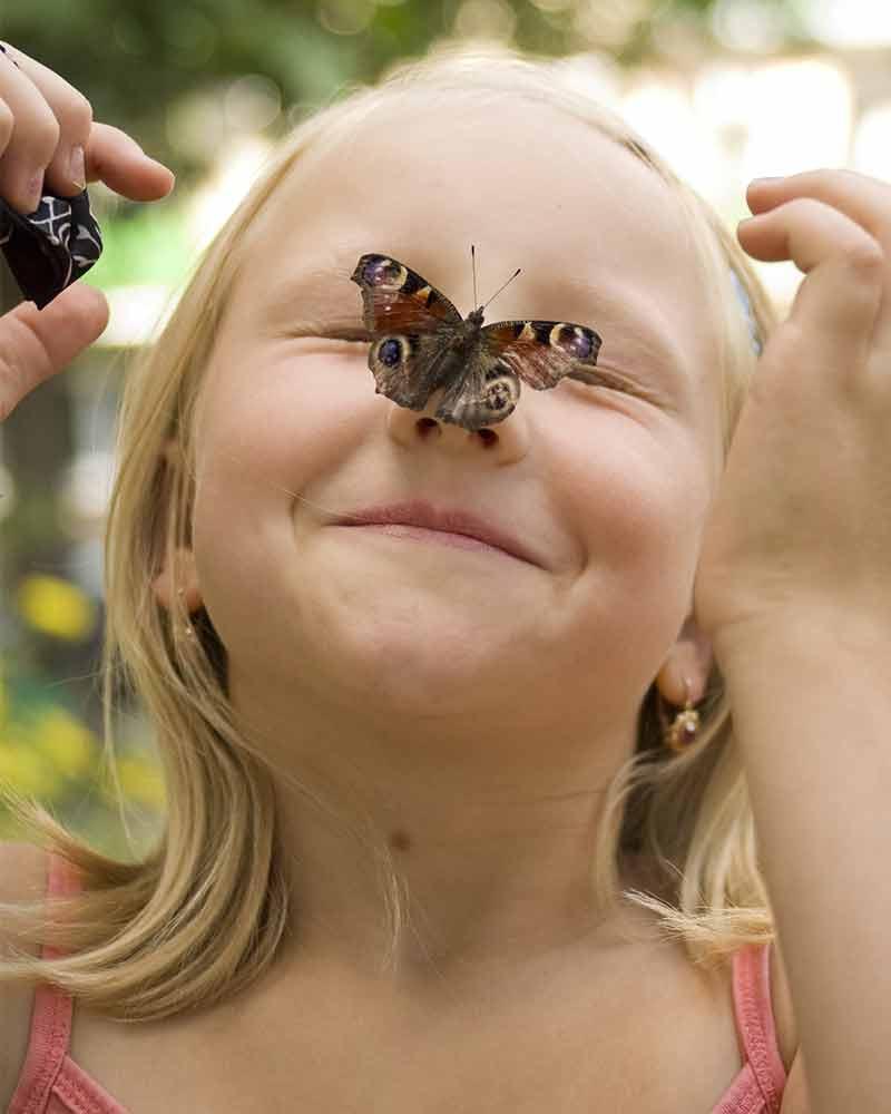 Menina com borboleta no rosto no borboletário em São Paulo