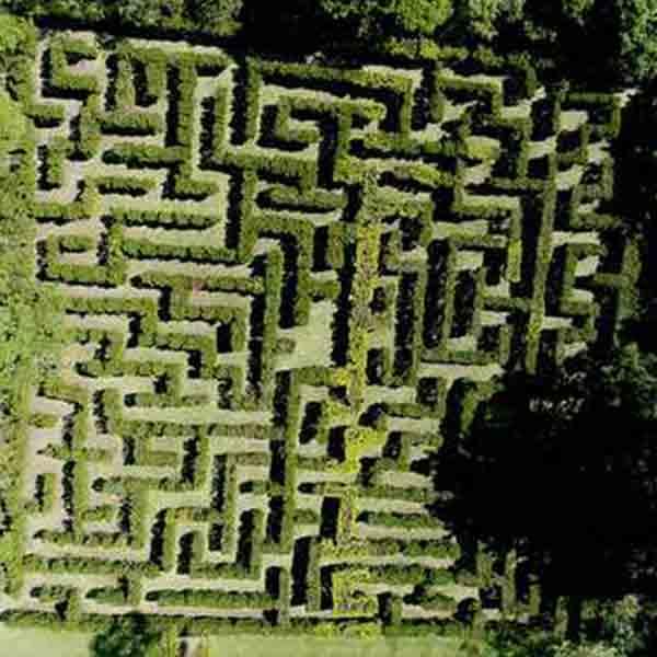 Labirinto para crianças e adultos em sp