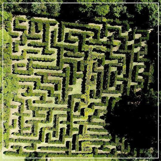 vista aérea do labirinto no borboletário