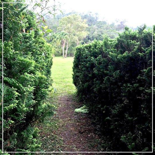 saída labirinto gigante no borboletário