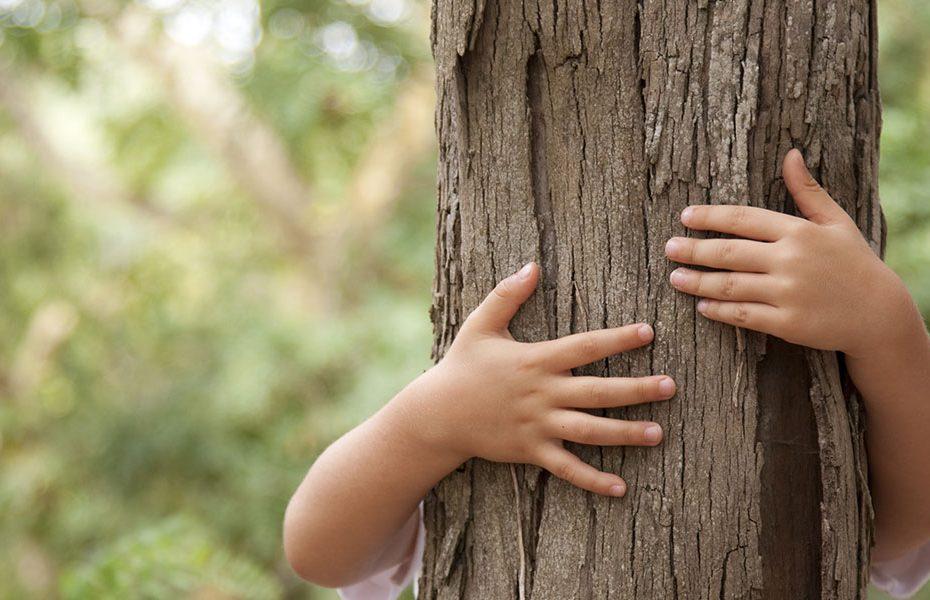 Seus filhos precisam de natureza
